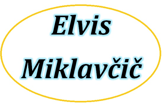 AVTOPREVOZNIŠTVO IN POSREDNIŠTVO ELVIS MIKLAVČIČ S.P.