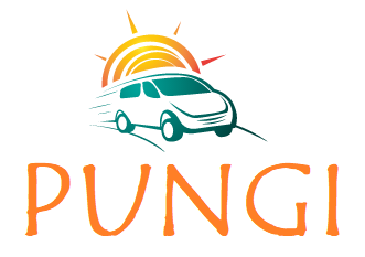 PUNGI - Martin Pungaršek s.p., prevozništvo
